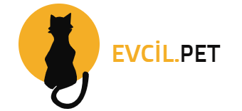 Evcil.Pet